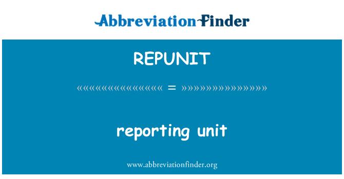REPUNIT: Raporlama birim