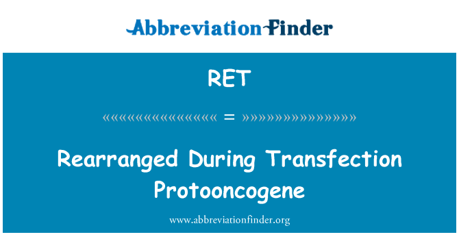 RET: Rearranged During Transfection Protooncogene