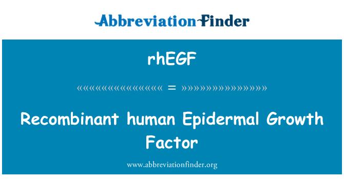 rhEGF: Recombinant human Epidermal Growth Factor