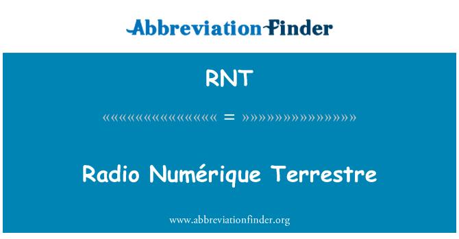 RNT: Radio Numérique Terrestre