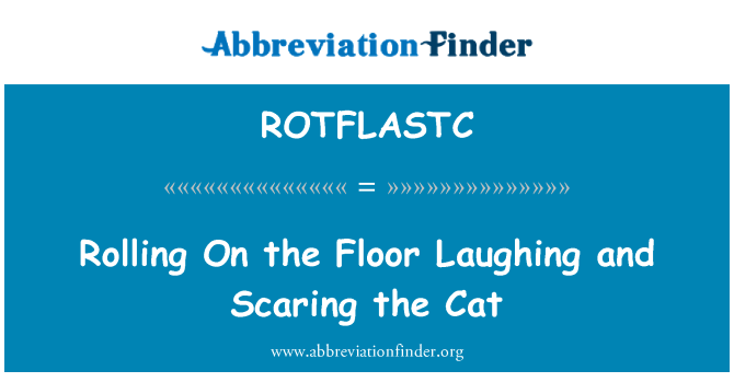 ROTFLASTC: Rolling On the Floor Laughing and Scaring the Cat
