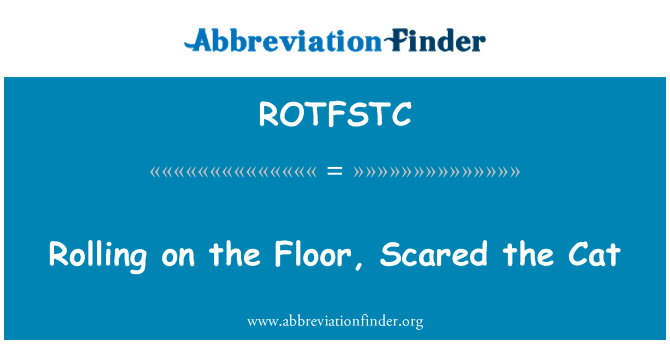 ROTFSTC: Rolling on the Floor, Scared the Cat
