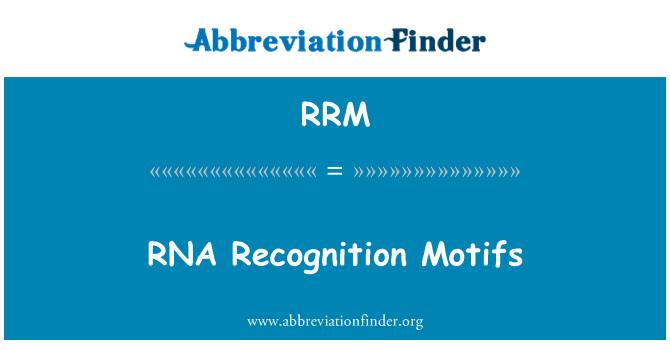 RRM: Reconocimiento de RNA motivos