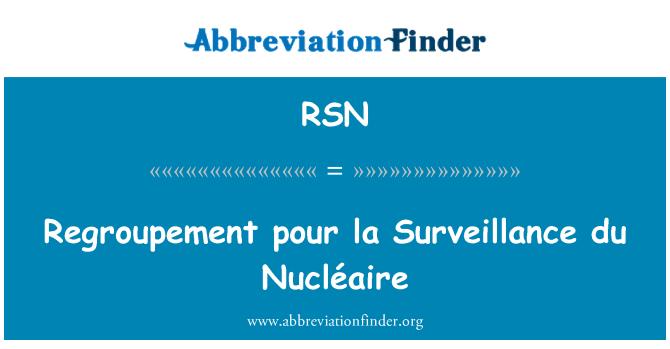 RSN: Regroupement pour la Surveillance du Nucléaire