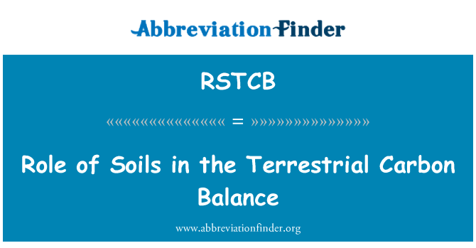 RSTCB: Role of Soils in the Terrestrial Carbon Balance