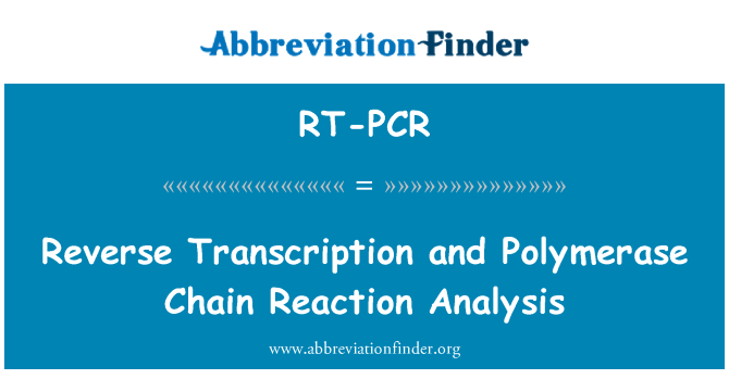 RT-PCR definition: Reverse transkription og Polymerase