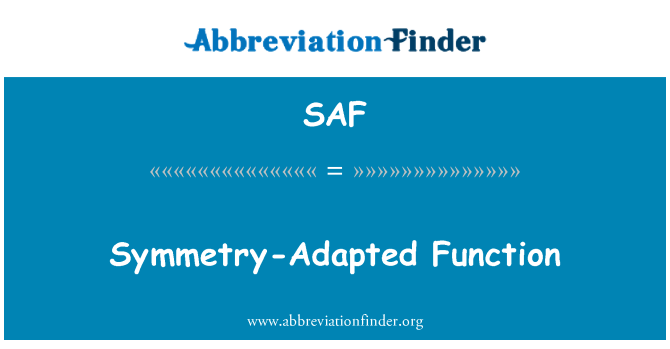 SAF: Symmetry-Adapted Function