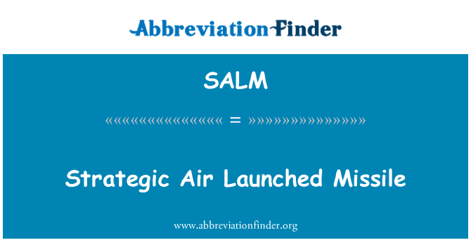 SALM: 战略空中发射导弹