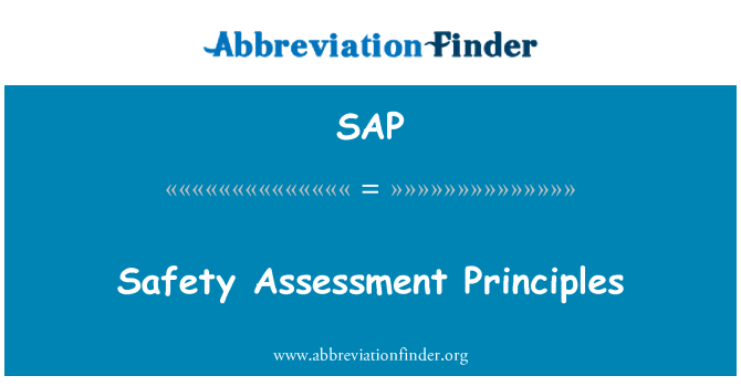 SAP: Safety Assessment Principles