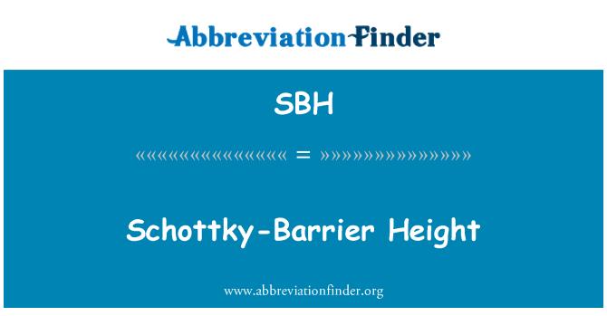 SBH: Schottky-Barrier Height