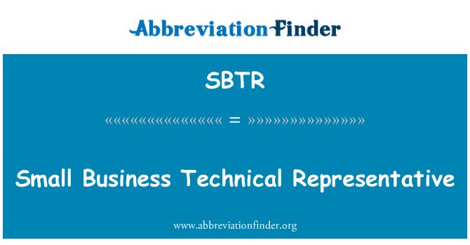 SBTR: Pequeño negocio representante técnico