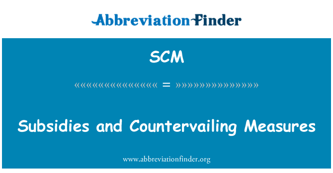 SCM: Subsidies and Countervailing Measures
