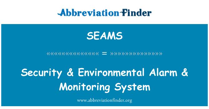 SEAMS: Security & Environmental Alarm & Monitoring System