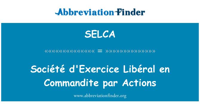 SELCA: Société d'Exercice Libéral en Commandite par Actions