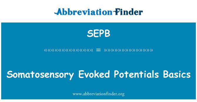 SEPB: Somatosensor uyarılmış potansiyeller temelleri