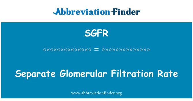 SGFR: Separate Glomerular Filtration Rate