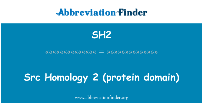 SH2: Src 同源 2 (蛋白质域)