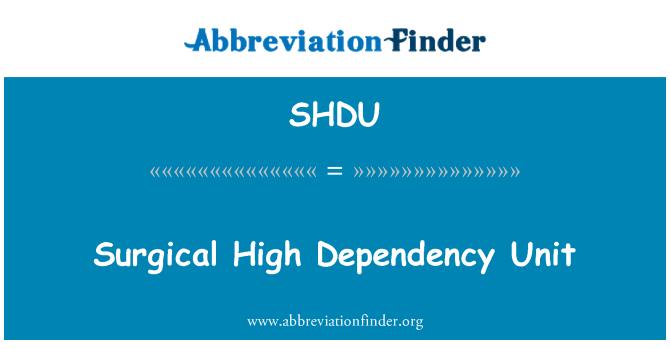 SHDU: Surgical High Dependency Unit