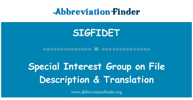 SIGFIDET: Special Interest Group on File Description & Translation