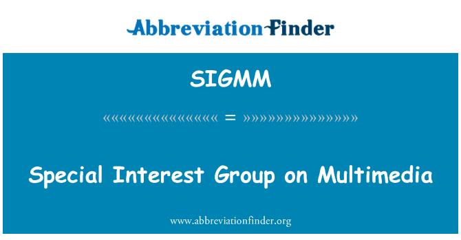 SIGMM: 多媒体特别兴趣组
