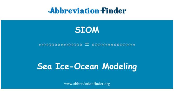 SIOM: Mere jää-Ocean modelleerimine