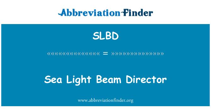 SLBD: 海灯梁总监