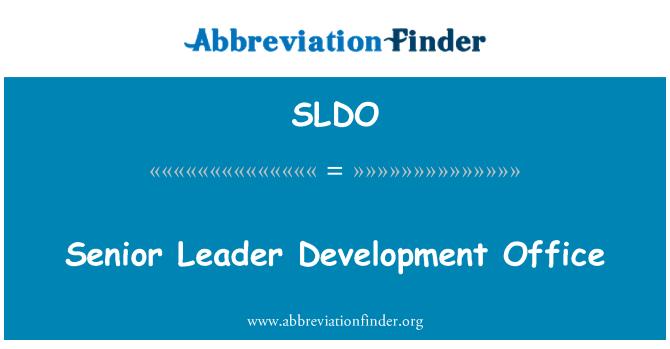 SLDO: Senior Leader Development Office