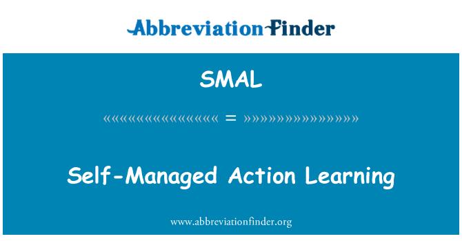 SMAL: Aprendizaje acción autogestionada