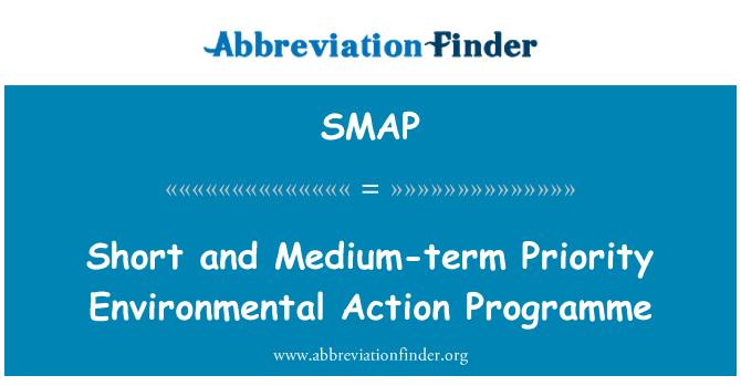 SMAP: Programa de acción ambiental prioridades a corto y mediano plazo