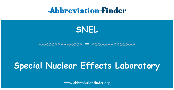 SNEL: Special Nuclear Effects Laboratory