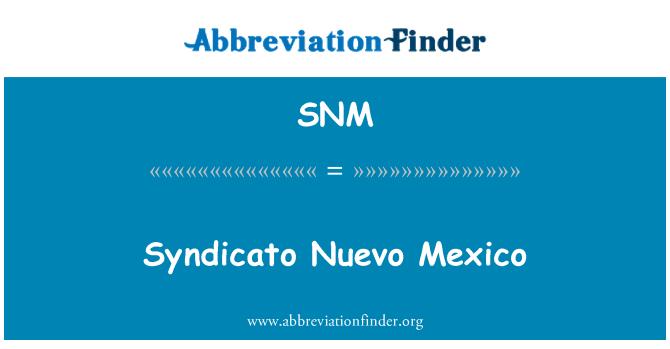 SNM: Syndicato Nuevo Mexico