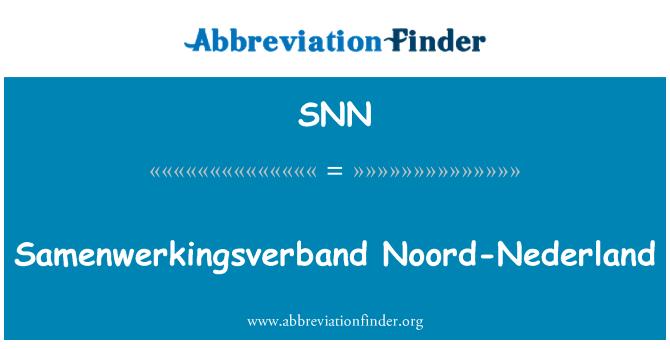 SNN: Samenwerkingsverband Noord-Nederland