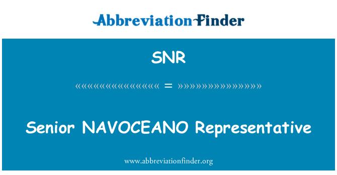 SNR: Senior NAVOCEANO Representative