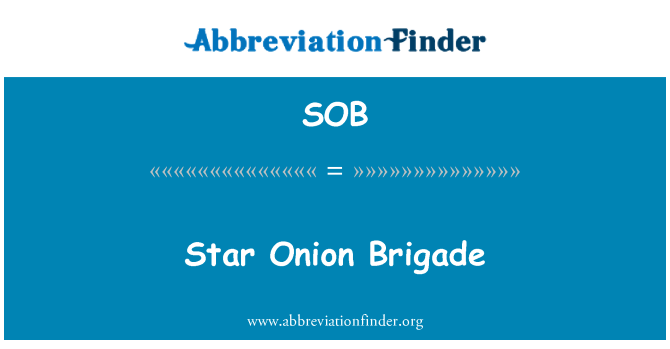 SOB: Star Onion Brigade