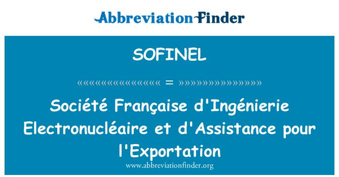 SOFINEL: Société Française d'Ingénierie Electronucléaire et d'Assistance pour l'Exportation