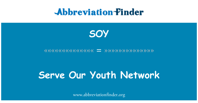 SOY: Serve Our Youth Network