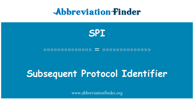SPI: Subsequent Protocol Identifier