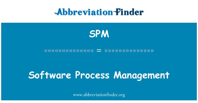 SPM: Software Process Management