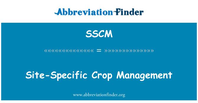 SSCM: Siteye özgü ürün yönetimi