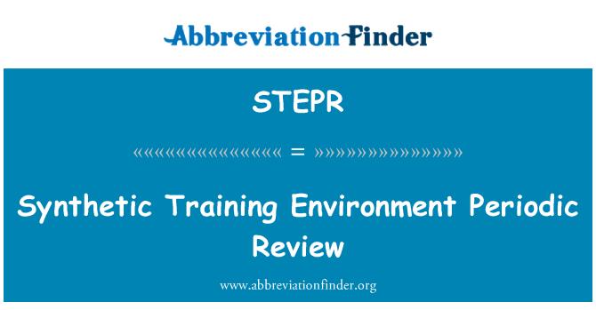 STEPR: Formación sintética medio ambiente revisión periódica