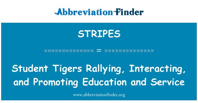 STRIPES: کوہ پیماؤں، تعامل اور تعلیم اور خدمت کو فروغ دینے کے طالب علم ٹائیگرز