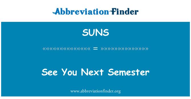 SUNS: Ver siguiente semestre