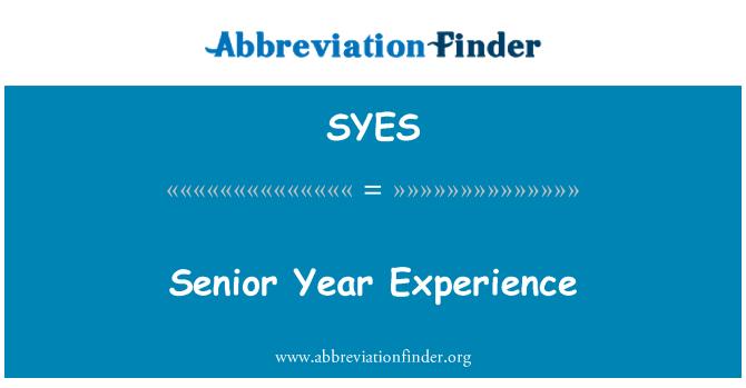 SYES: Üst düzey yıl deneyim