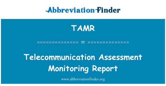 TAMR: Telekomünikasyon değerlendirme izleme raporu
