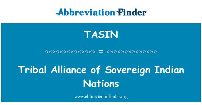 TASIN: Tribal Alliance of Sovereign Indian Nations