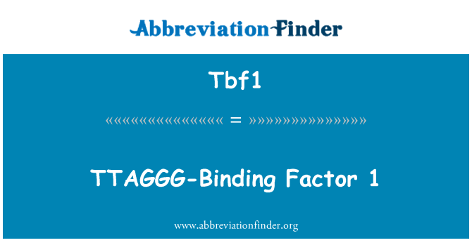 Tbf1: TTAGGG-Binding Factor 1