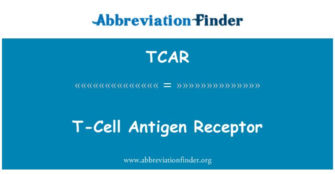 TCAR: T-Cell Antigen Receptor