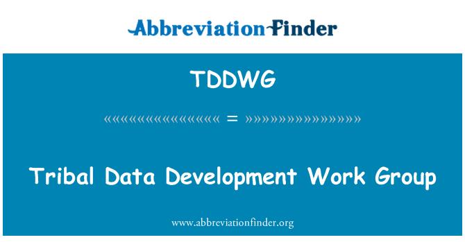 TDDWG: Tribal Data Development Work Group