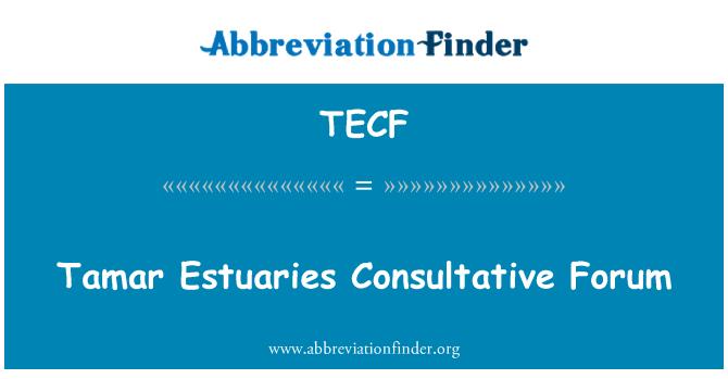 TECF: Tamar Estuaries Consultative Forum