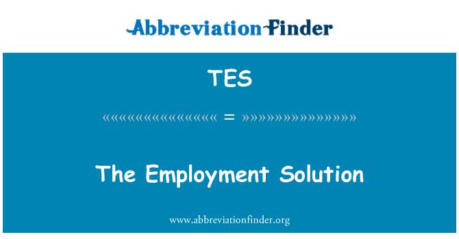 TES: Työllisyyden ratkaisu